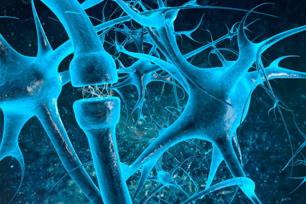 a research article about The goals of the SNTP are to produce graduates who are exceptional research scientists addressing critical neurological problems of consequence to human health.