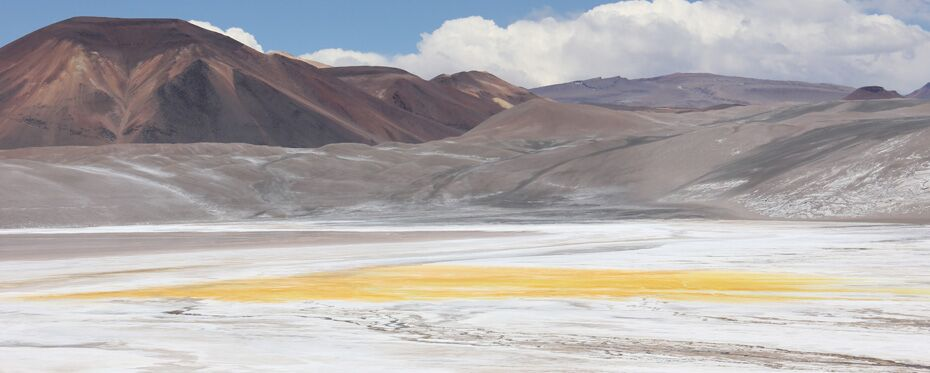 The acidic brine lakes of Chile: A surprising microbial community