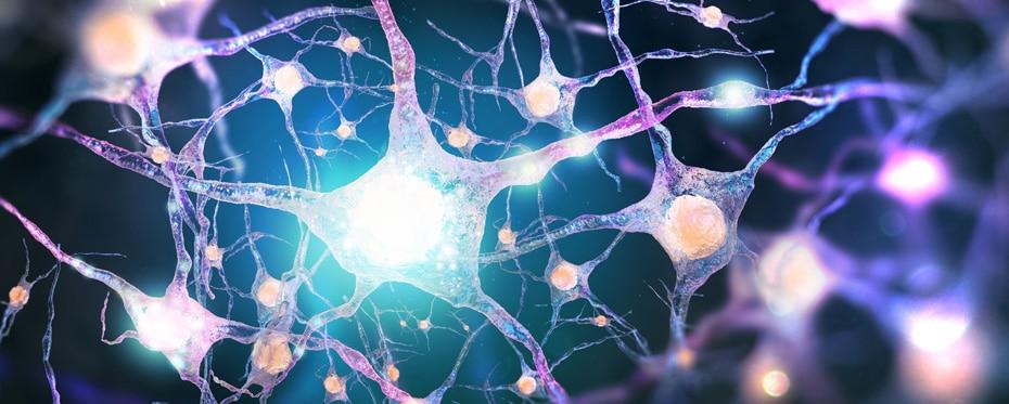 Advances in CNS drug development