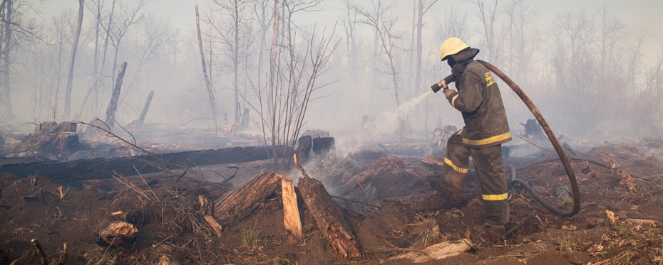 Are wildfires following bark beetles more severe?