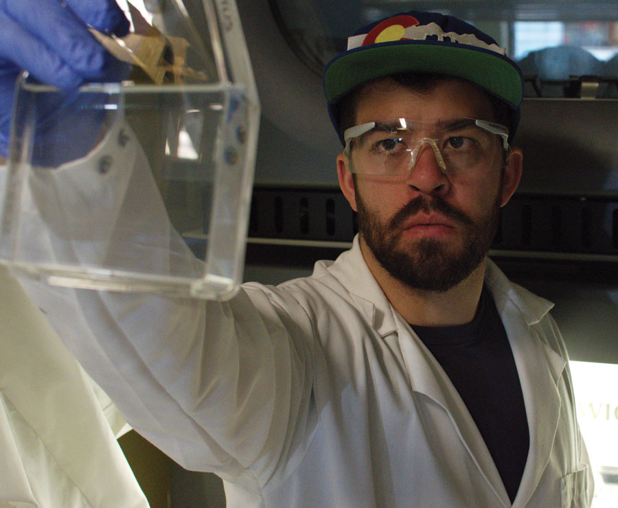 Harnessing photosynthetic organisms for a bio-fuelled future - Research Outreach