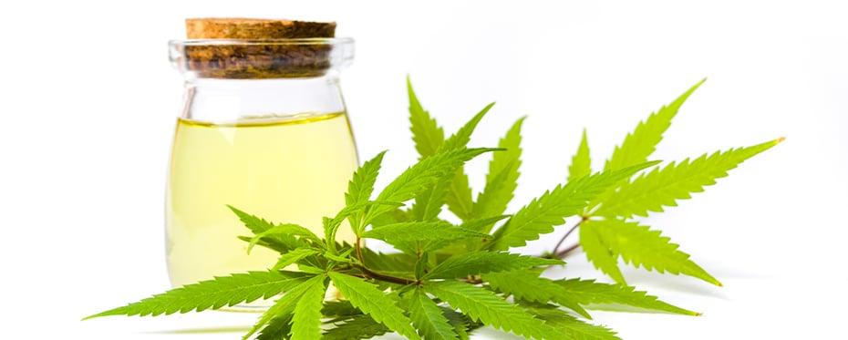 The anxiety-reducing effects of cannabidiol treatment in teenagers with social anxiety disorder