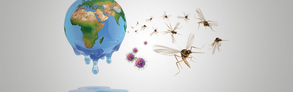 Climate change impacts the transmission of vector-borne diseases