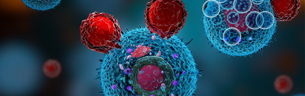 Overcoming resistance to cancer immunotherapy