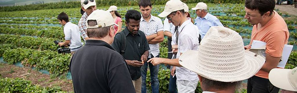 Integrated pest management: Advances in sustainable food production and food security