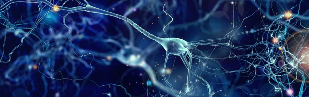 graphic of neurons and synapses