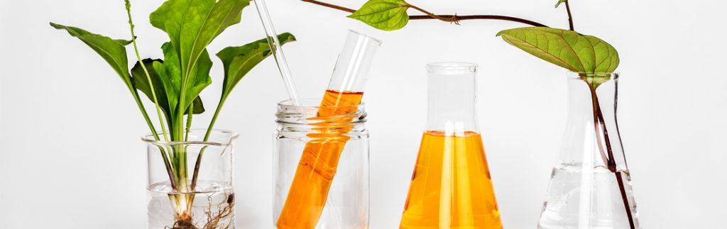 Greener replacements for hazardous solvents